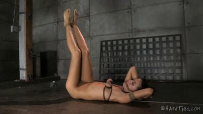 Lyla Storm – Squirmy Squirrel – BDSM, Humiliation, Torture