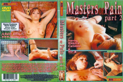 Masters Of Pain 2
