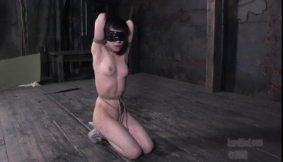 Enters into round-the-clock training during which you'll enjoy her creative positions, ballgag