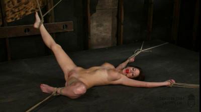 Emily Addison 2
