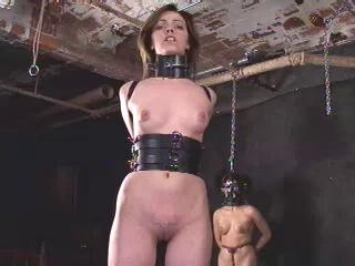 Insex 2001