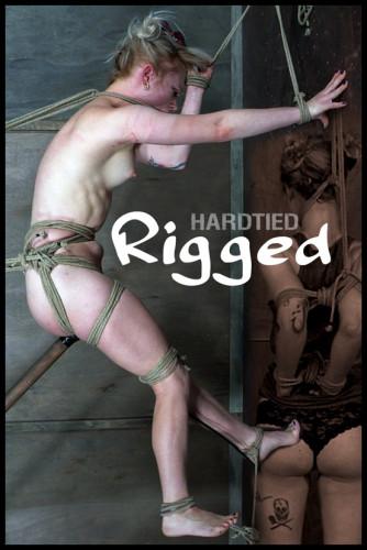 Rigged — Anna Tyler