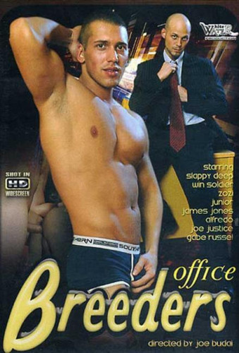 Office Breeders (DVDRip 2011)
