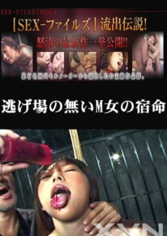 Japanese Torture   Bondage and Fucking DVD