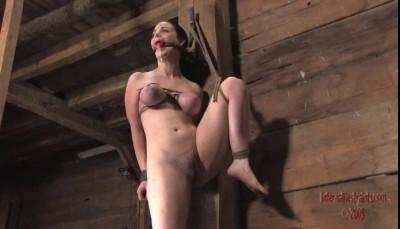 Sybil 5