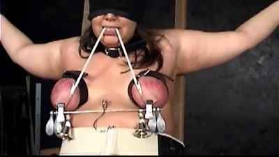 seven ladder tit torture