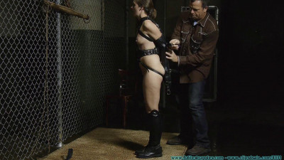 The Vigilante Turns His Attention Towards Rachel – Pony Girl – Part 1