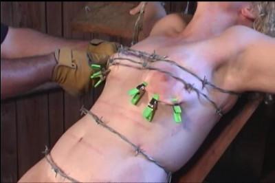 Runt Barbed Wire Bitch