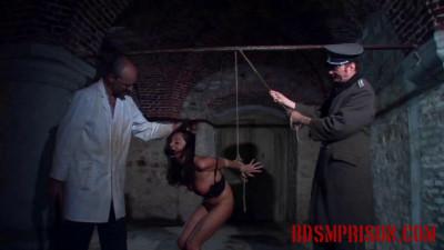 Natalia Endures BDSM Interrogation with Suspension And Flogging