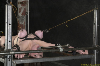 Insex – Bedding Piglet – 2003