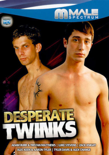 Desperate Twinks 1 (2006)