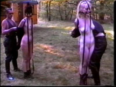 British Ponygirls (1997)