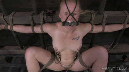 bdsm Hardtied - May 29, 2013 - Sweet Butter - Tracey Sweet