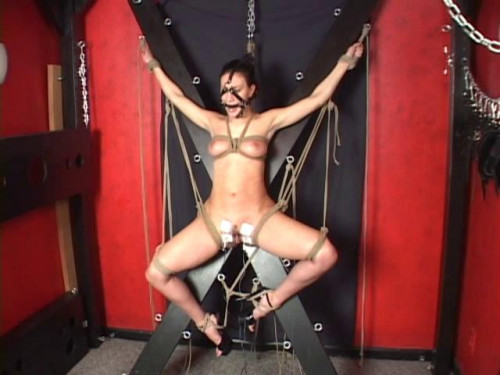 bdsm Hopeless Damsels