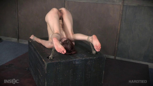 bdsm Hardtied - Aug 17, 2016 - Whipped Pussy - Violet Monroe