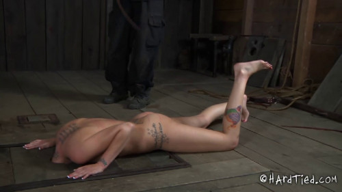 bdsm Helpless Panic Part Two Hailey Young Pd
