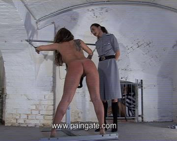 bdsm regular discipline