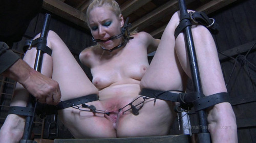 bdsm Headless Hunter Part 1