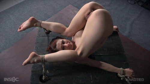 bdsm Whipped Pussy (Aug 17, 2016)