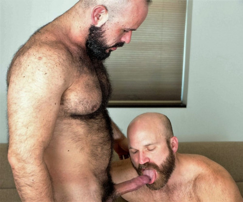 BearFilms - Nixon Steele and Marco Bolt
