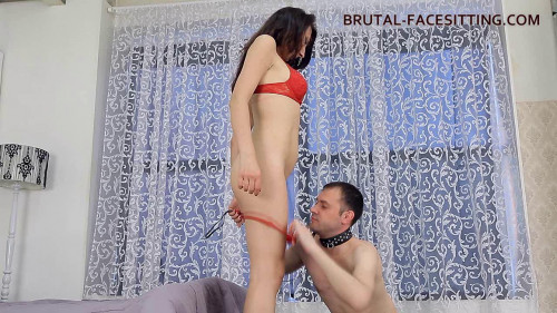 Femdom and Strapon Anabella is teaching her slave to do cunnilingus