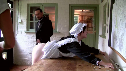 bdsm Dreams of Spanking - Double Caning