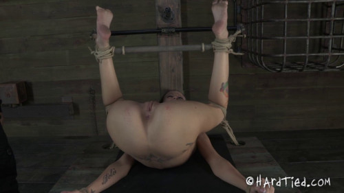 bdsm Hailey Young