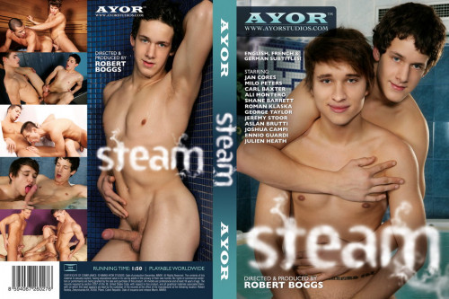 Steam  ( AYOR Studios )