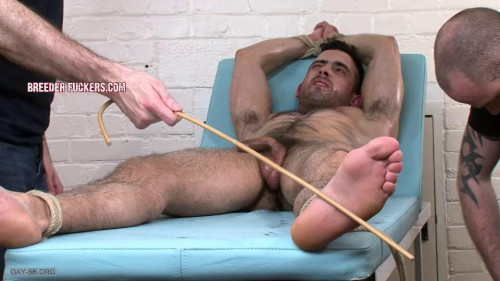 Gay BDSM Jamie BDSM Part Five (2015)