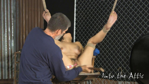 bdsm Intotheattic - Super Vip Gold Collection. Part 1.