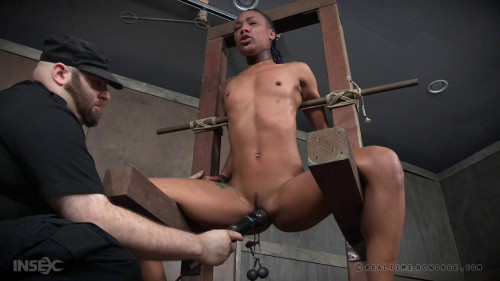 bdsm Back for More Part 2