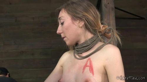 bdsm Emma Haize - Confessions of a Homewrecker - BDSM, Humiliation, Torture