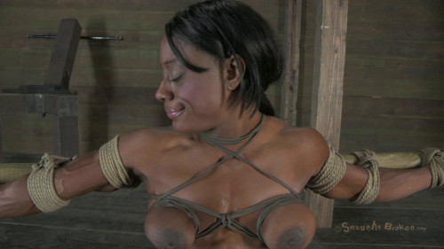 bdsm Ashley Starr - Love Pain