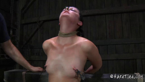 bdsm Surprises Part Two - Hailey Young
