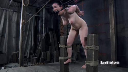 bdsm Sybil Hawthorne 2010