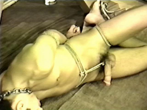 Gay BDSM Trainee