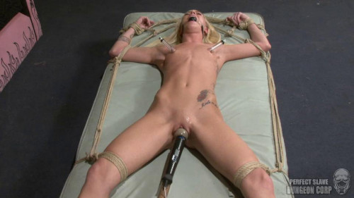 bdsm PerfectSlave 1