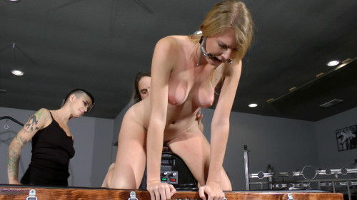 bdsm Ashley Lane Crash Test Slave