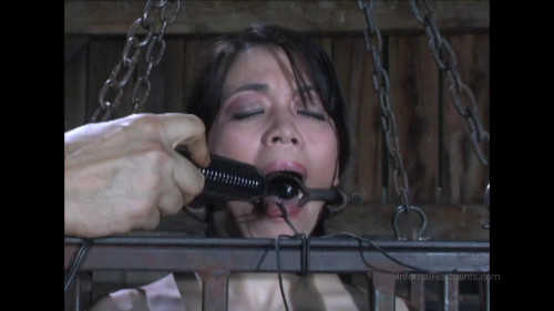 bdsm Caged