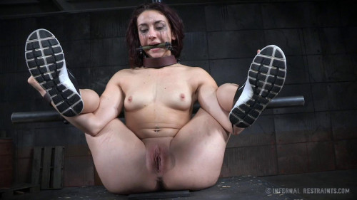 bdsm Mandy Muse - Big Girls Dont Pry (2016)
