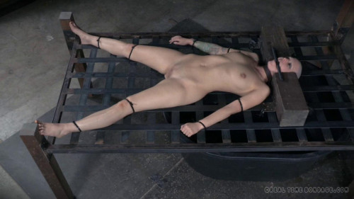 bdsm Electric Torture - Abigail Dupree, Endza