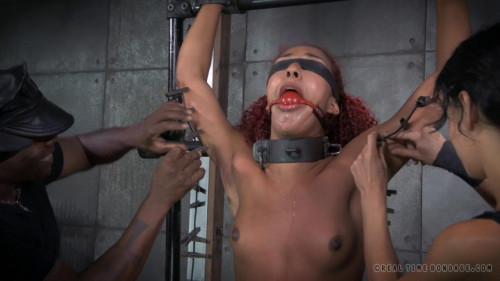 bdsm Franken-Pussy Part 2 - Daisy Ducati, Nikki Darling