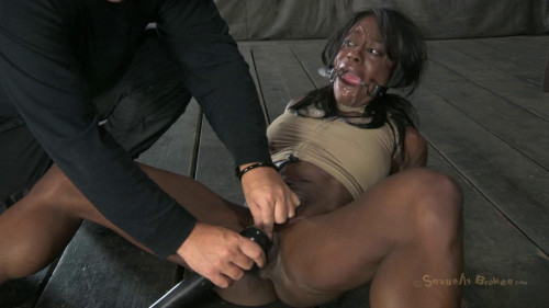 bdsm Ashley Starr - Professional Body builder