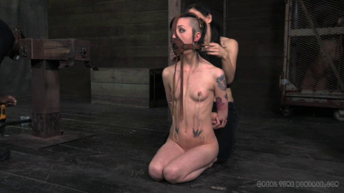 bdsm Jingle Sluts 2