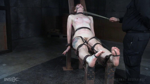 bdsm Barbary Rose - Toe Tease