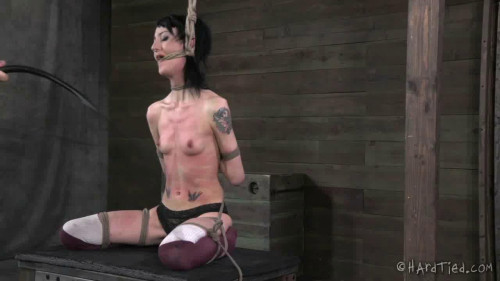 bdsm Beat the Bunny - Bunny Doll