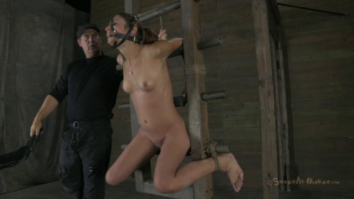 bdsm Ass fucked to orgasm