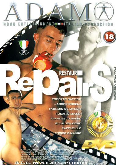 Restauri repairs