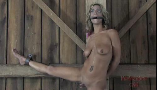 bdsm Humiliation Slut - Kali Kane