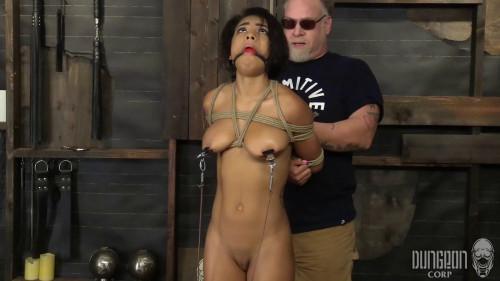 bdsm Nicole Bexley - My Little Bondage Toy part 1
